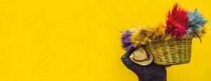 Bright Colour Design | Marla Communications