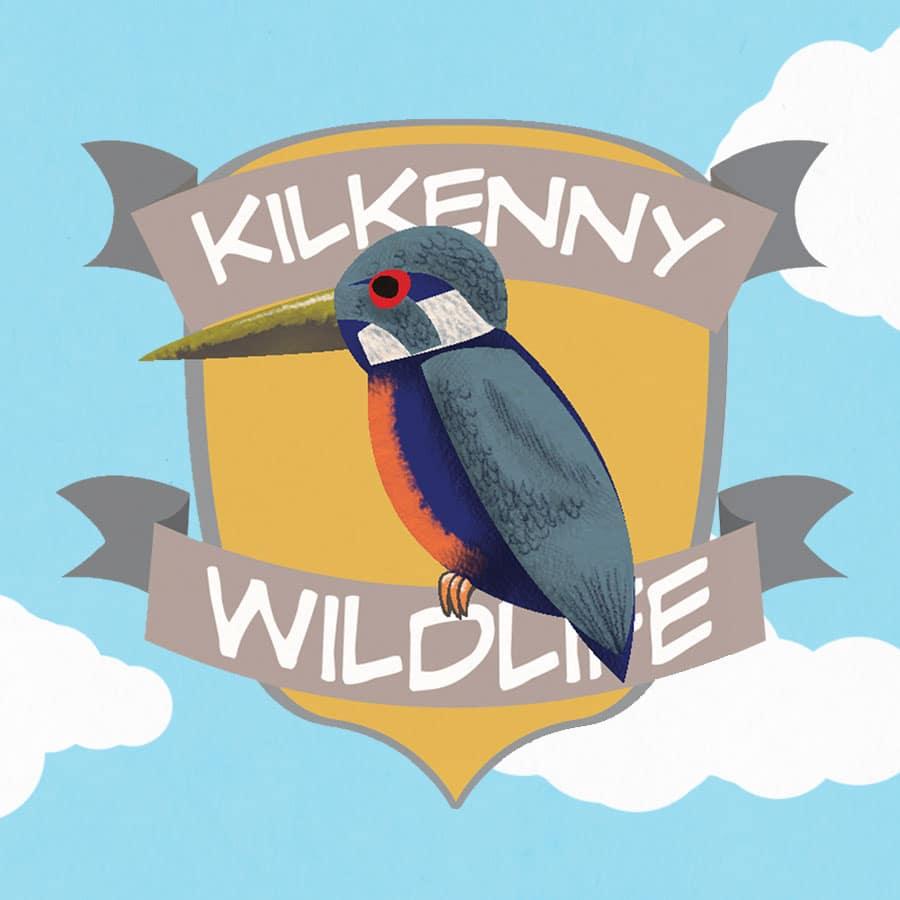 Kilkenny Wildlife Detective