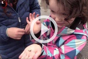 Kilkenny Wildlife Detective Video