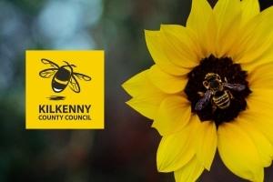 Kilkenny County Council | Pollinator Program