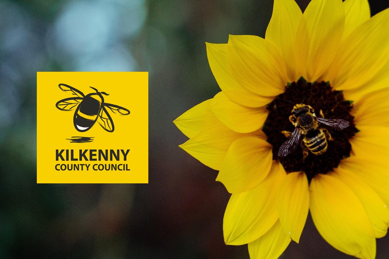 Kilkenny County Council   Pollinator Program