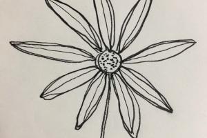 Wildflower Restaurant by Adrian Martin original sketch